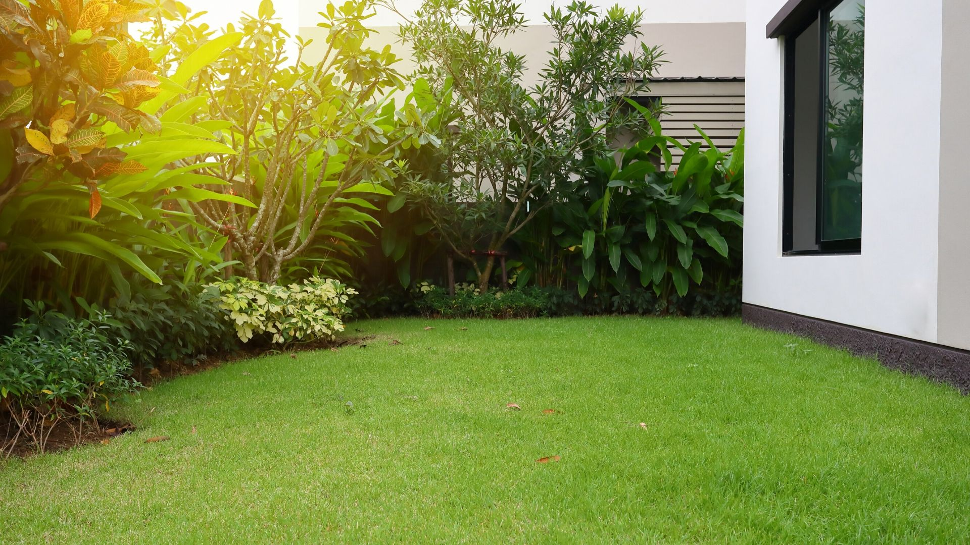 Artificial turf service - Vittorio Remodeling & Construction
